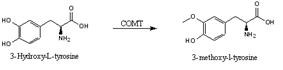 3-O-methylation of Levodopa via COMT activity.