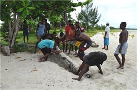 Eight laborers work to concealing a rosewood log by burying it on a beach, with several onlookers surrounding them