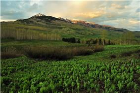 Mountains in spring along the Copper Lake Trail near Crested Butte.