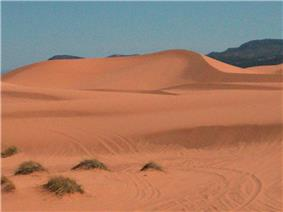 Coral Pink Sand Dunes State Park.jpg