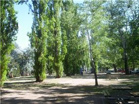 Picnic area with trees, picnic tables and children's play equipment.