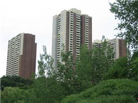 Three of Crescent Town's buildings towering over the Taylor Creek ravine.