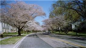 Crofton Parkway