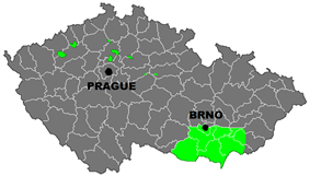 Wine region of Moravia