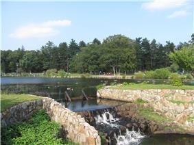 D.W. Field Park