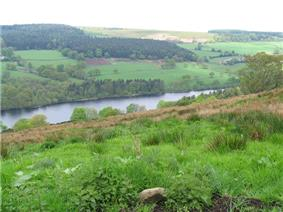 View across a partially wooded valley containing a reservoir