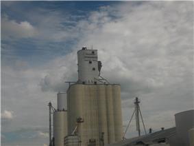 Dalhart Consumers grain elevator, 2008