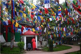 A man and a woman praying at a small white shrine dedicated to Lord Ganesh. Several colourful flags on buntings are strung across poles in front of the shrine.