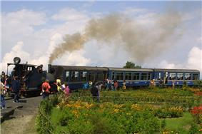 A small steam locomotive with three blue carriages.