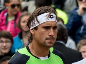 Ferrer ended the year with the most singles titles but it was Novak Djokovic who finished at number one for the second consecutive year.