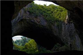 Stone arch with foliage, seen from cave entrance