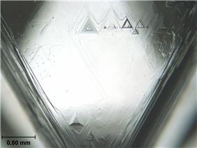 A triangular facet of a crystal having triangular etch pits with the largest having a base length of about 0.2 millimetres (0.0079 in)