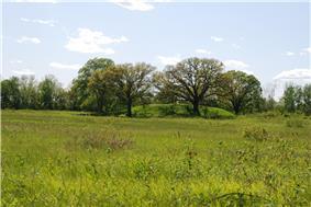 Dickson Mounds