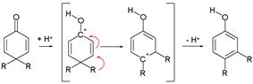 The dienone phenol rearrangement