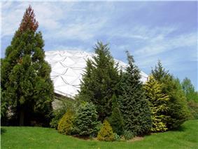 Dinosaur State Park and Arboretum
