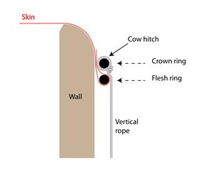 Schematic of two-ring skin mounting