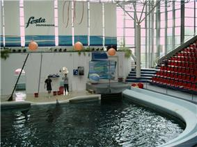 A dolphin interacts with two trainers on a stage at indoor pool; the audience stands are empty. Large windows allow light in.