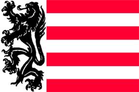 Flag of Sas van Gent