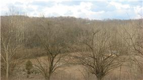Dravo Gravel Site