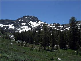 Mountains and forest along the trail to Winnemucca Lake.