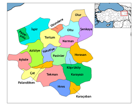 Districts of Erzurum