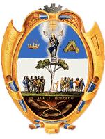 Official seal of Celaya