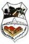 Coat of arms of Pedro Juan Caballero