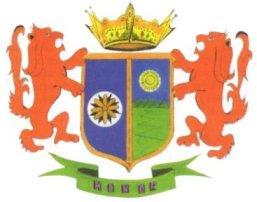 Coat of arms of Territorio Insular