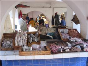 Essaouira, Fish Market.JPG