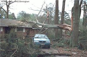 F0 damage example