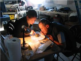 Charles Frankel and Cathrine Frandsen of Crew 3 examine rock samples in the FMARS lab on July 22, 2001.