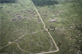 Aerial photo of a large open area bordered by thick vegetation. A road runs from top to bottom through the middle of the position while a range of field defences, earthworks and armoured vehicles are evident. Smoke is rising from the position.