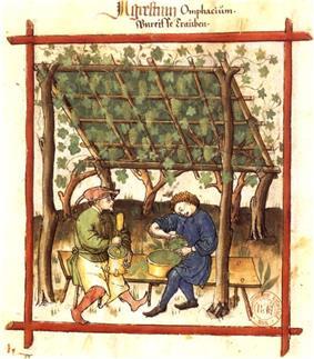 Photographshowing a medieval image (tacuino sanitatis).