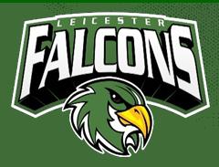 falcons_logo240.png