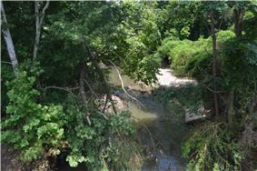 Fall Creek, seen from the Illinois Route 57 bridge