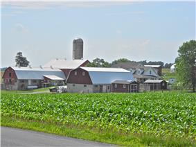 Farm near the township office