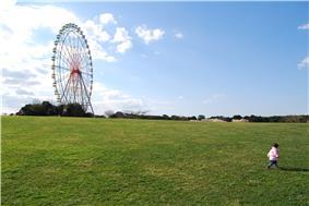 Ferris wheel with Hitachi Seaside Park in Hitachinaka