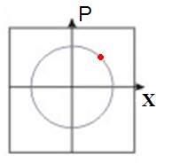 Figure 1: One harmonic oscillator represented in the phase space by its momentum and position