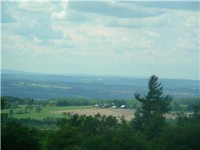 Overlooking the hills, forest, and surrounding area in Finger Lakes National Forest.