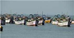 Set of boats anchored in the shores.