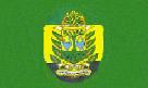 Kumasi Metropolis flag