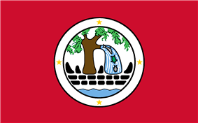 Flag of Ngiwal