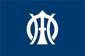 Flag of Sakae