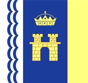 Flag of Stryi
