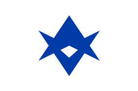 Flag of Toyota