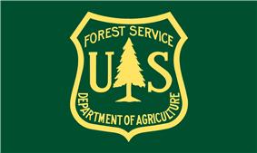 Normal or de jure version of flag, or obverse side Flag of the Forest Service