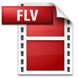 FLV file Icon from Adobe Systems