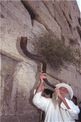 Flickr - Government Press Office (GPO) - Blowing the Shofar at the Western Wall.jpg