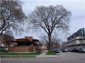Frank Lloyd Wright - Robie House 1.JPG