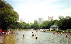 Frog Pond at Boston Common.jpg